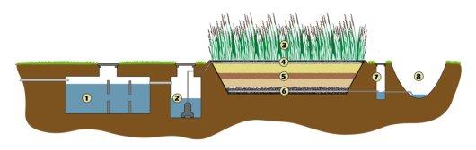 Werking verticaal doorstromend helofytenfilter: Het afvalwater wordt verzameld in een sedimentatietank (1) waar het kan bezinken en waar het biologische zuiveringsproces begint. Vanuit de pompput (2) wordt het water meerdere malen per dag over het helofytenfilter gepompt (4). Hier stroomt het langs de wortels van het riet (3) en door de verschillende lagen filtersubstraat (5) Het gezuiverde afvalwater (effluent) stroomt via een drainage netwerk (6) in een controle-inspectieput (7) waarna het geïnfiltreerd kan worden in de bodem of geloosd kan worden op een sloot (8).